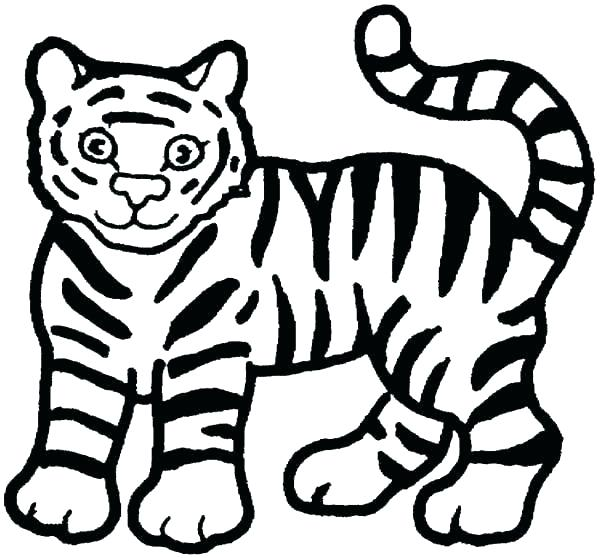 600x558 Tiger Color Page Free Tiger Coloring Pages Tiger Cub Coloring