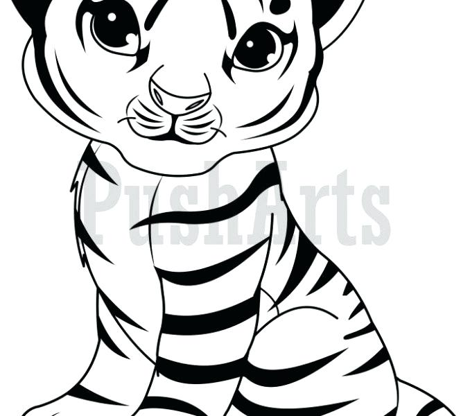 678x600 Tigers Coloring Pages The Turtle A The Tiger A The Cheetah Clemson