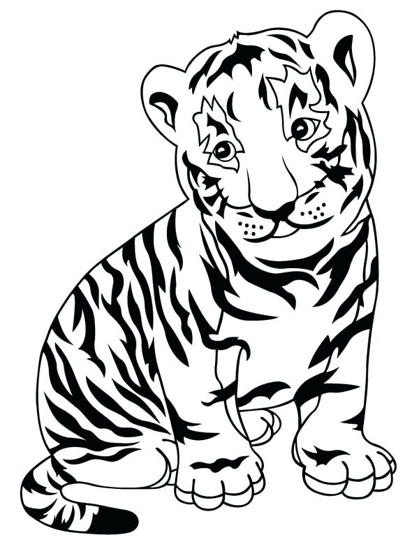 600x776 Tigers Coloring Pages Tiger Coloring Page Tiger Coloring Pages