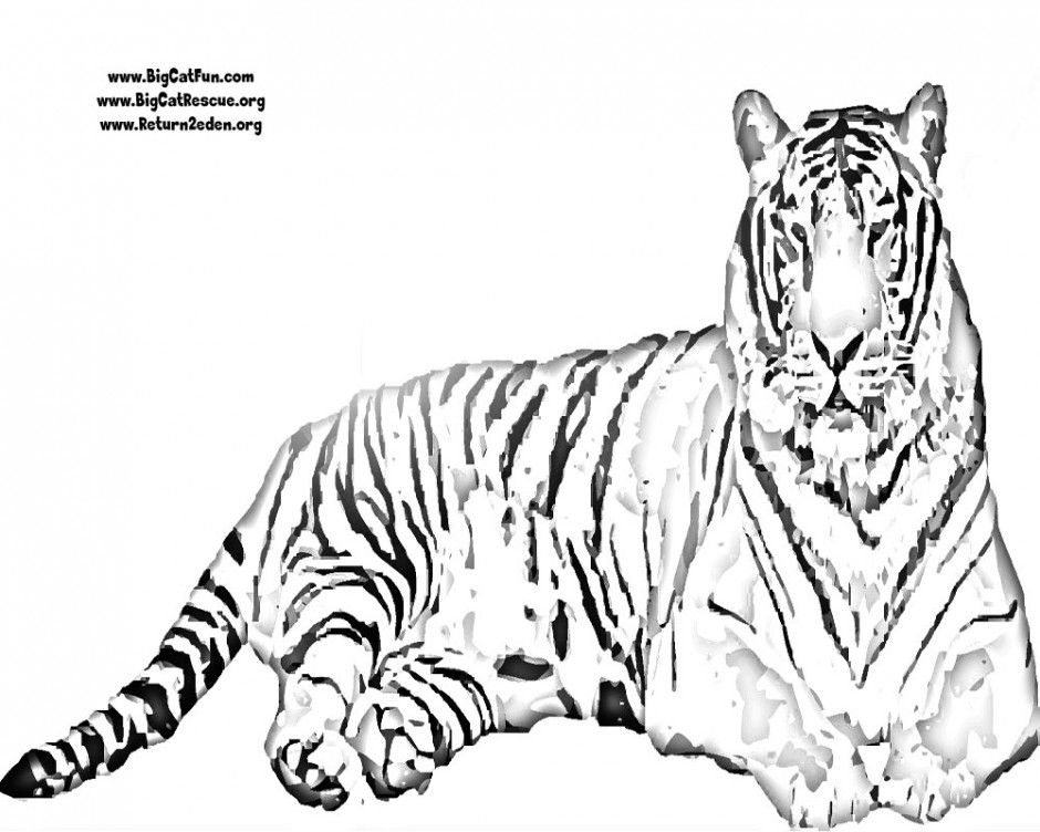 940x752 Tigers Coloring Pages Tiger Coloring Pages To Print Clemson