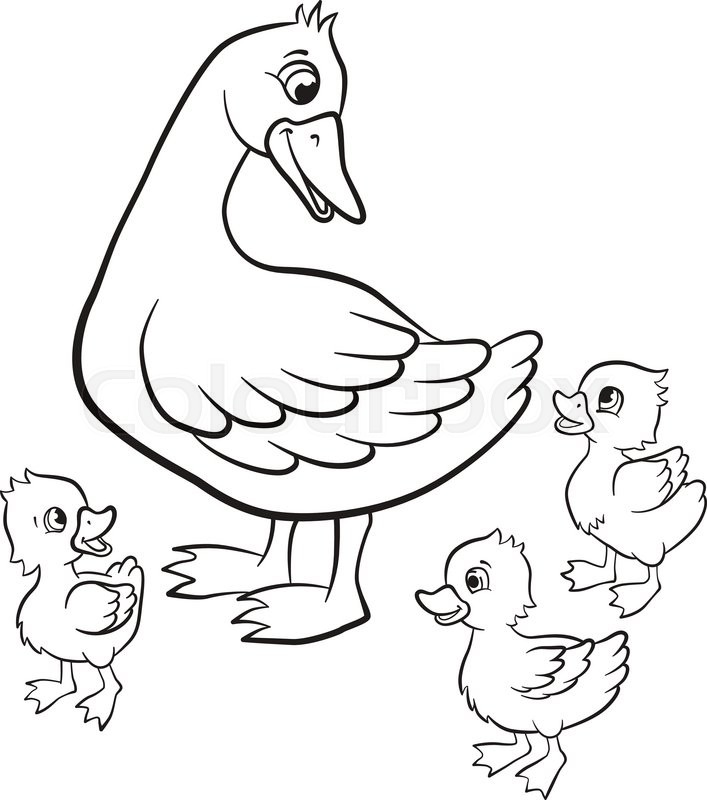 707x800 Coloring Pages Kind Duck And Free Little Cute Ducklings Walk