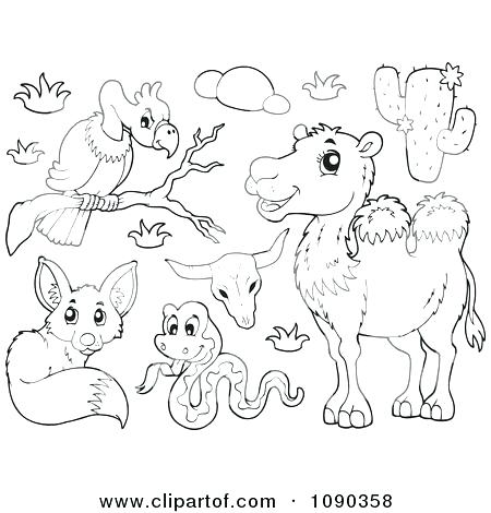 450x470 Plants And Animals Moose Animal Coloring Pages Rocky Mountains