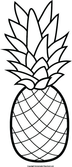 236x550 Pineapple Coloring Pages Free Pineapple Free Clip Art Hair Image
