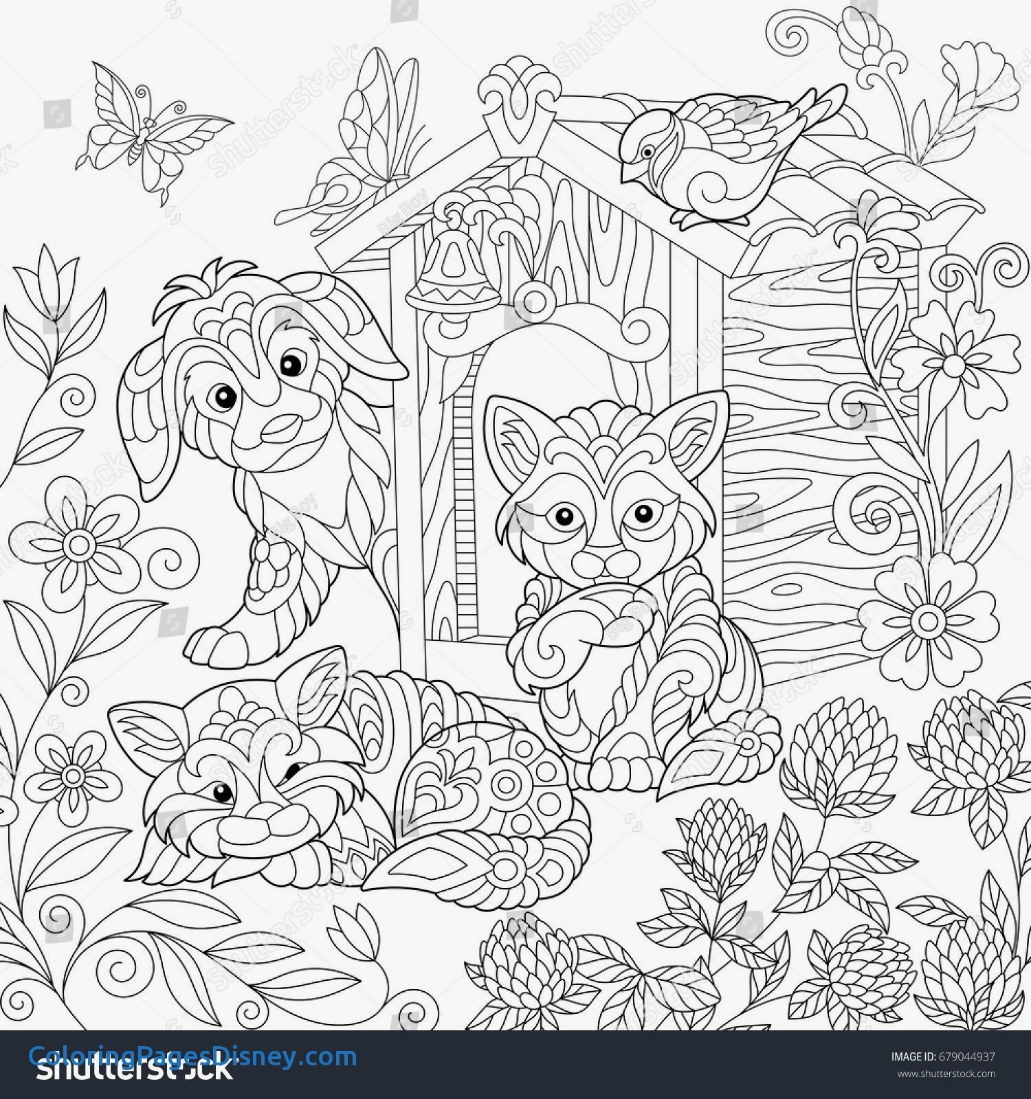 Clover Coloring Pages Printable