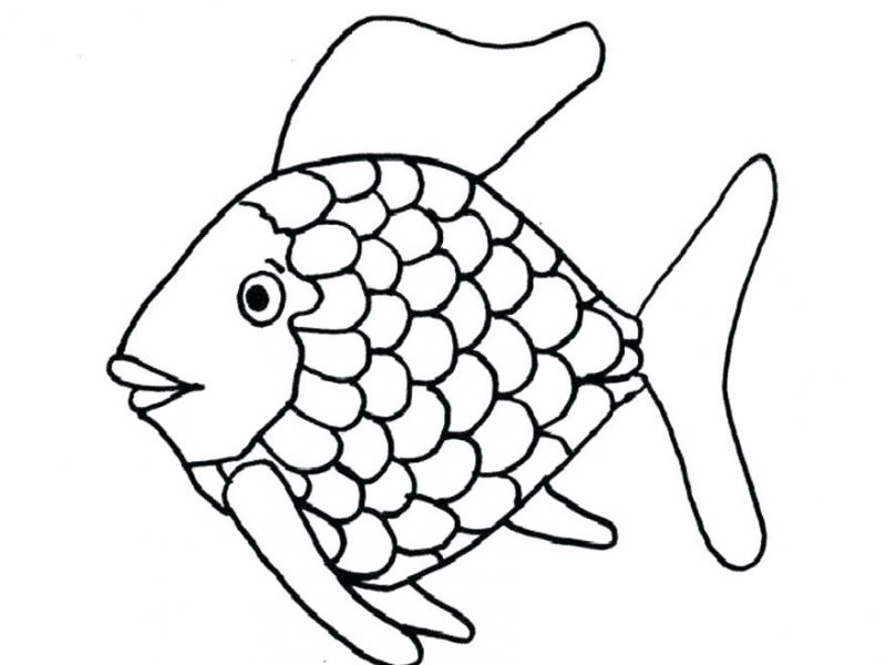 800x600 Fish Coloring Pages Easyfish Pictures To Color Fish Coloring Pages