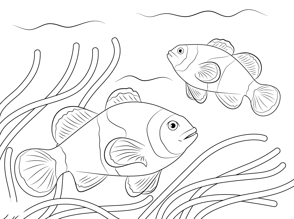 1199x894 Unique Clown Fish Page To Color Collection Printable Coloring Sheet