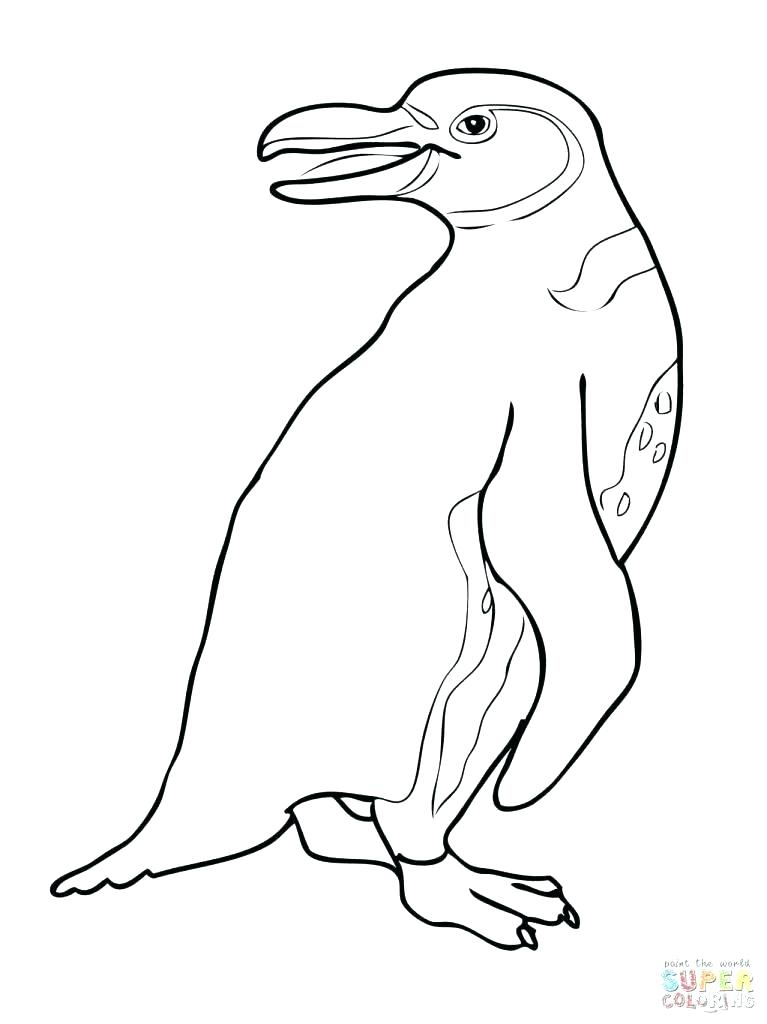 767x1024 Club Penguin Coloring Pages Penguin Coloring Sheets Club Penguin