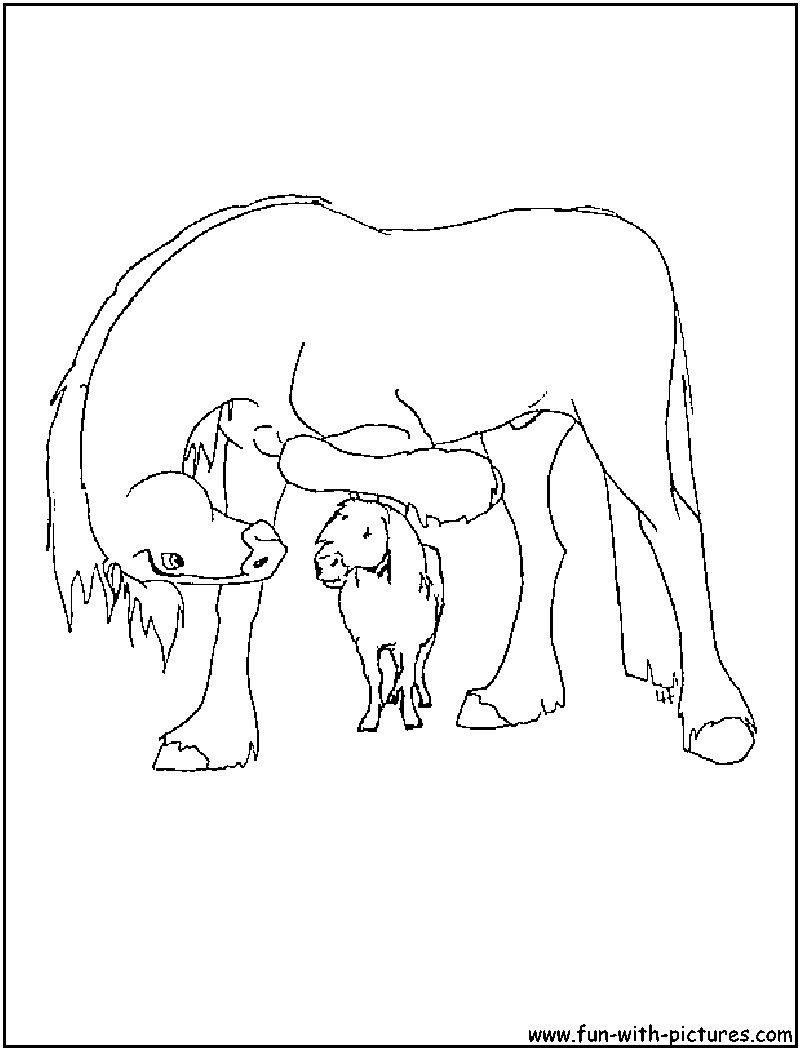 Clydesdale Coloring Pages