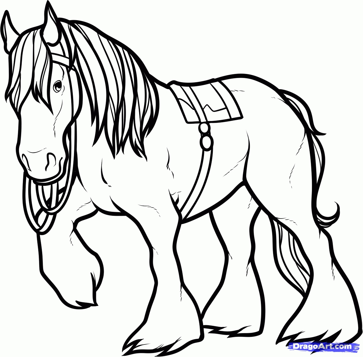 A Clydesdale | Horse coloring books, Horse coloring pages, Horse ... | 1168x1187
