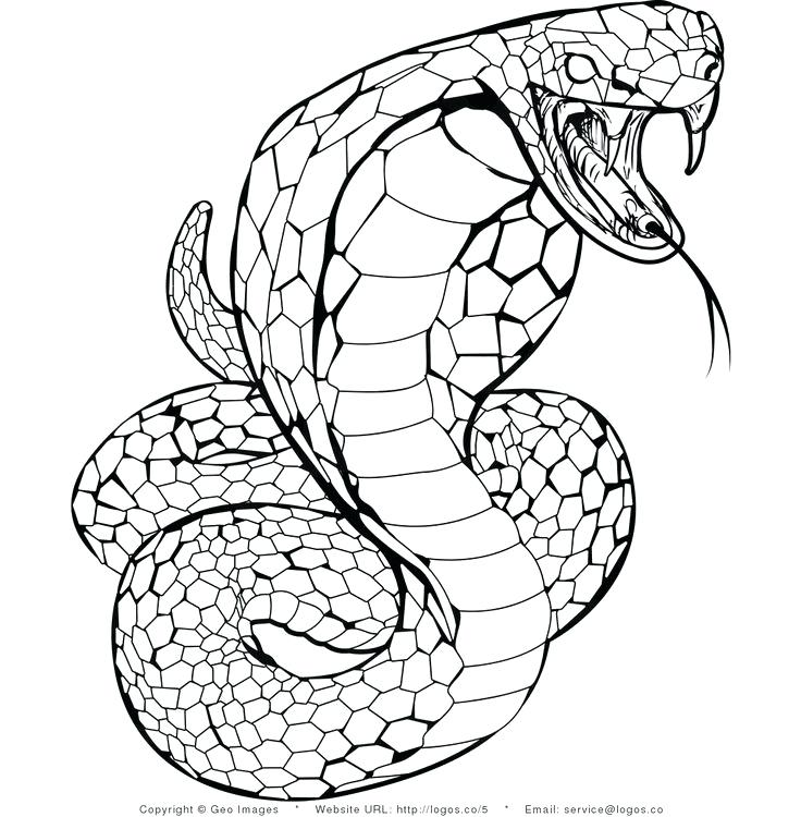 Cobra Snake Coloring Pages