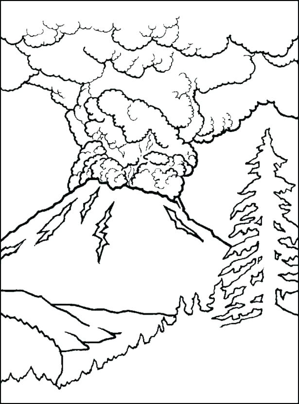 615x832 Aboriginal Coloring Pages Animal Coloring Pages Cockatoo Colour