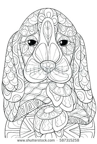 The best free Spaniel coloring page images. Download from ...