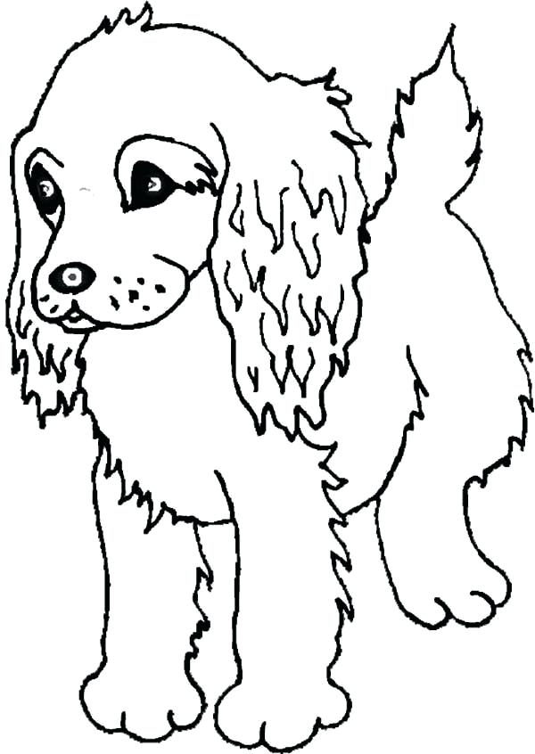 600x846 Cocker Spaniel Coloring Pages Spaniel Puppy Coloring Page Coloring