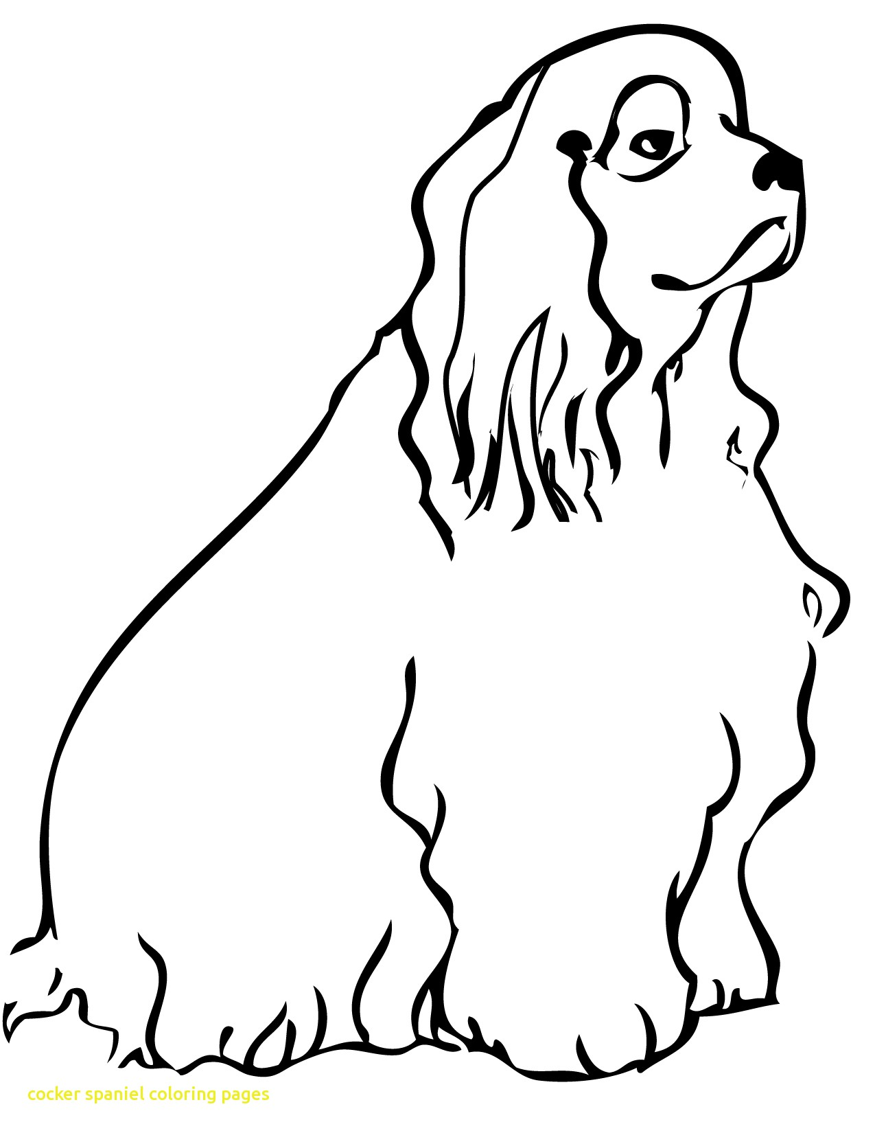 1275x1650 Cocker Spaniel Coloring Pages With Stunning Cocker Spaniel
