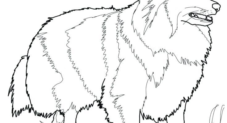 735x400 Dog Coloring Old Sheep Dog Coloring Page Dog Old Sheepdog Old
