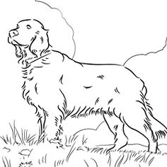 236x236 Cocker Spaniel Coloring Page Learning, Dog And Dog Quilts