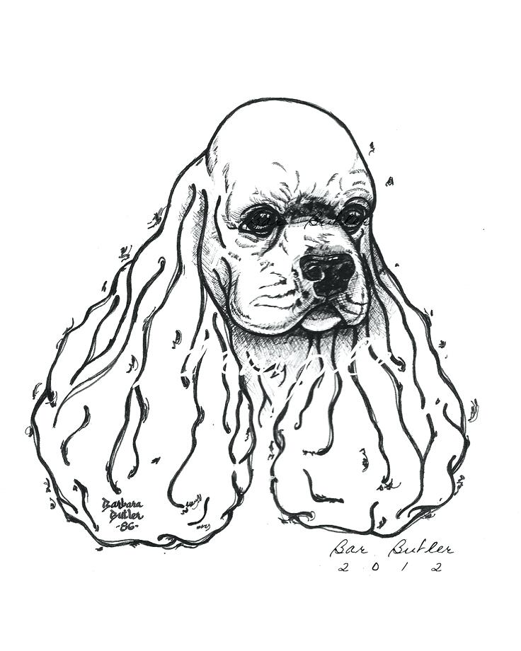 736x920 Cocker Spaniel Coloring Pages Best My Handmade Artist Mohair Bears