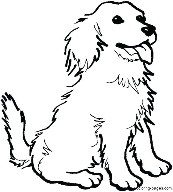 567x629 Cocker Spaniel Coloring Pages Coloring Page Of Dog Dogs Color