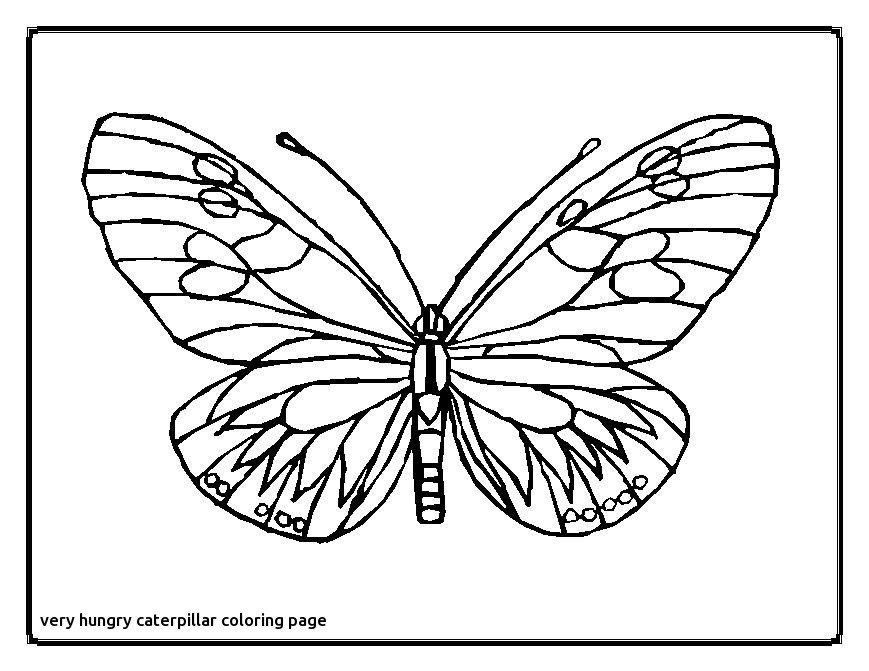 Cocoon Coloring Page
