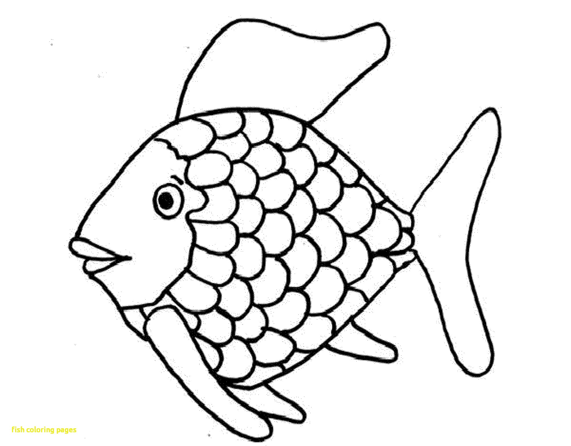 Cod Fish Coloring Pages At Getdrawings Com Free For Personal Use