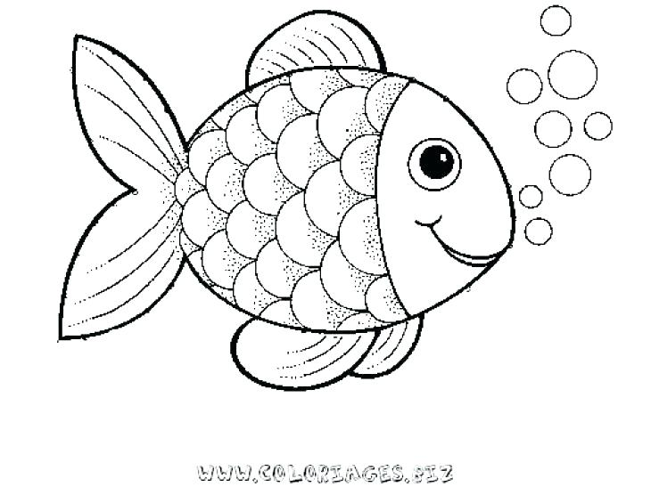 730x547 Idea Saltwater Fish Coloring Pages For Fish Color Pages