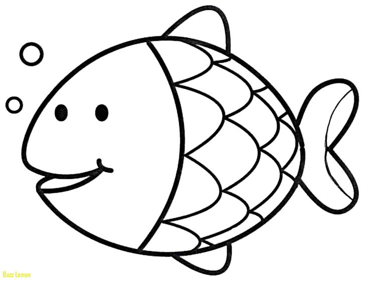 728x562 Coloring Pages Of Cod Fish Buzz Coloring