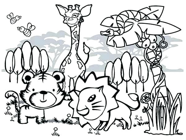 600x452 Forest Animals Coloring Pages Collage Coloring Pages Forest