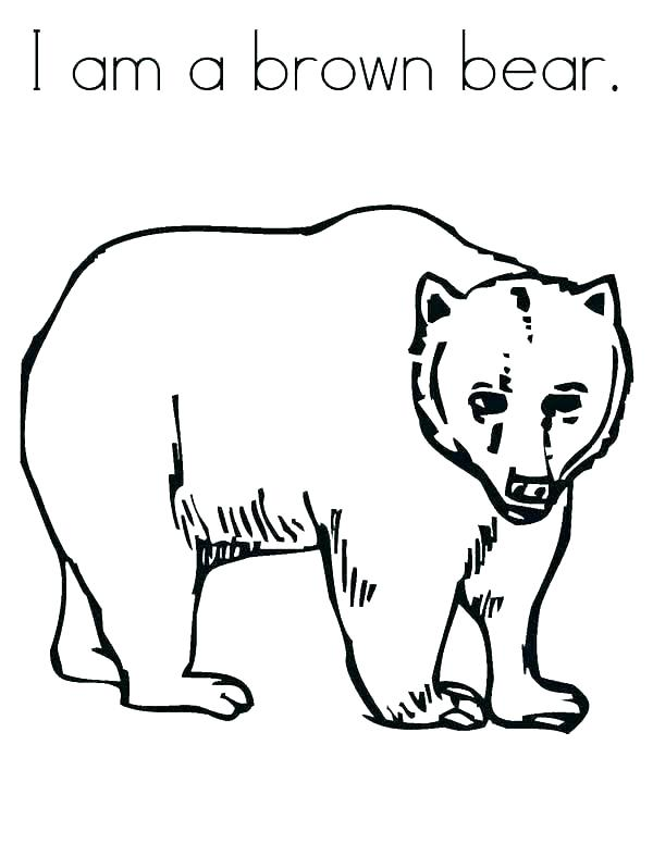 600x776 Pooh Bear Colouring Pages Online Bears Coloring Pages Happy Day