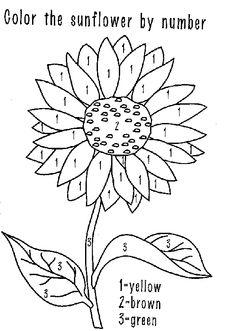 236x331 Kansas Sunflower Kansas, Sunflowers And Menu