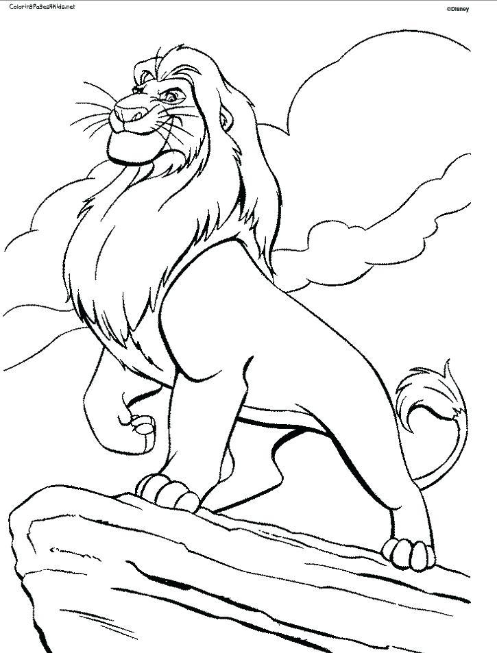 725x953 Lion Color Page Drawn Lion Coloring Page Lion King Kovu
