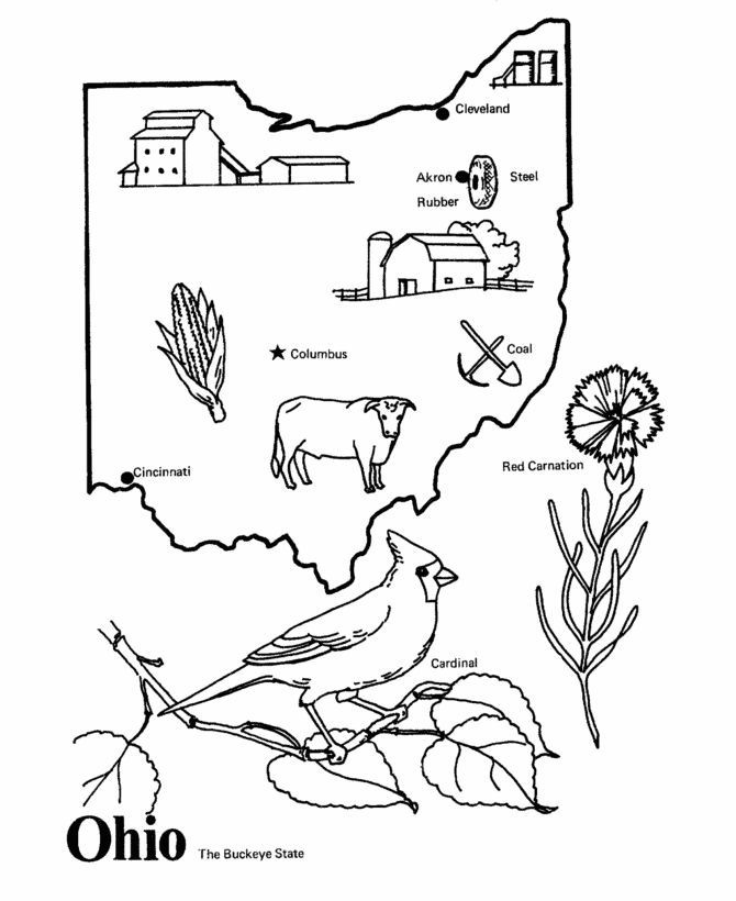 670x820 Elegant Colorado State Flag Coloring Page