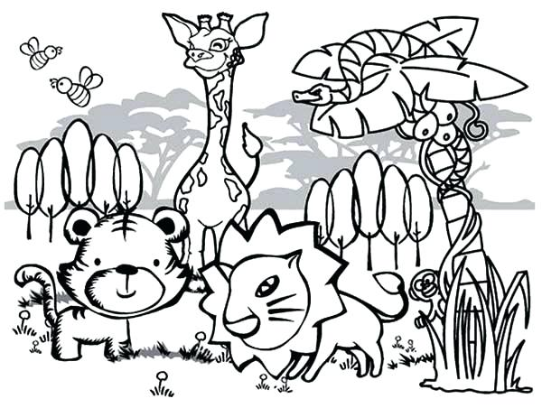 600x452 Well Animals Coloring Pages Best Animals Coloring Pages Colorado