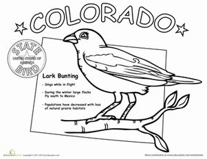 Colorado State Coloring Pages