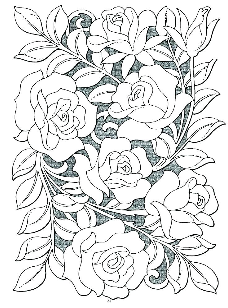 736x991 Roses Coloring Page Rose Coloring Pages Packed With Rose Coloring