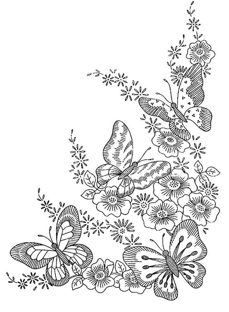 736x1004 Botany Coloring Pages
