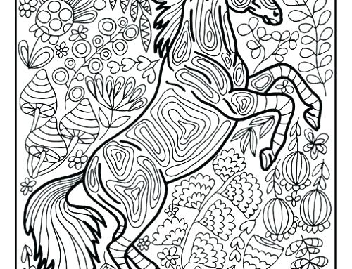 500x383 Coloring Collie Coloring Pages Border Horse Page Free Puppy