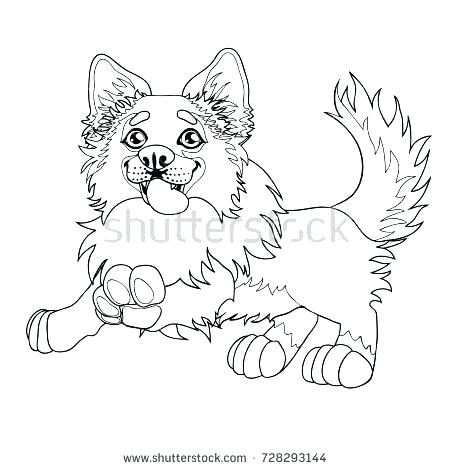 450x470 Border Collie Coloring Pages Border Collie Coloring Pages Dog