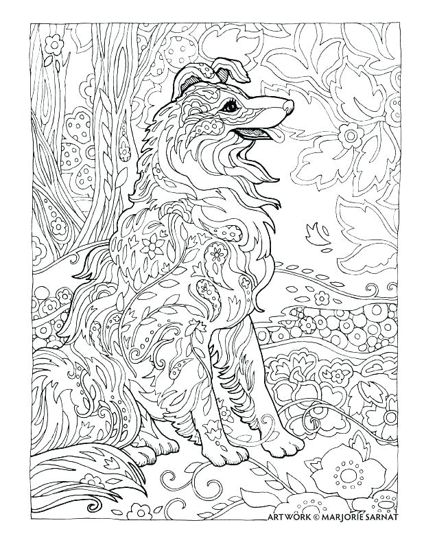 618x800 Border Collie Coloring Pages Border Collie Coloring Pages Large