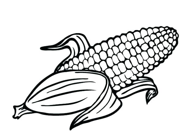 600x427 Ear Coloring Page Coloring Pages Corn Ear Of Corn Coloring Page