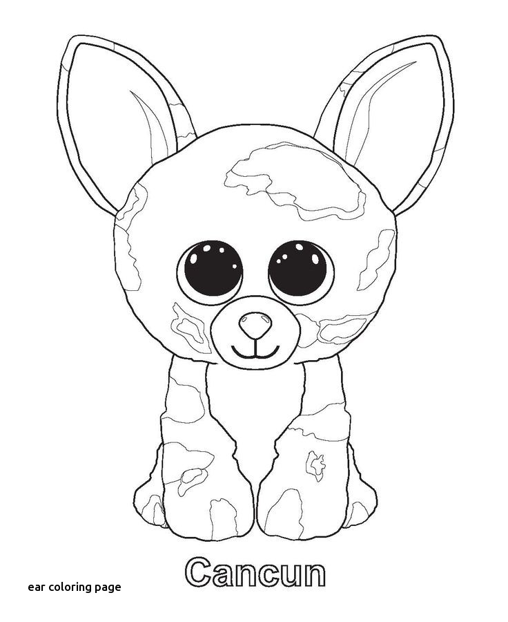 736x900 Best Tegning Images On For Ear Coloring Page