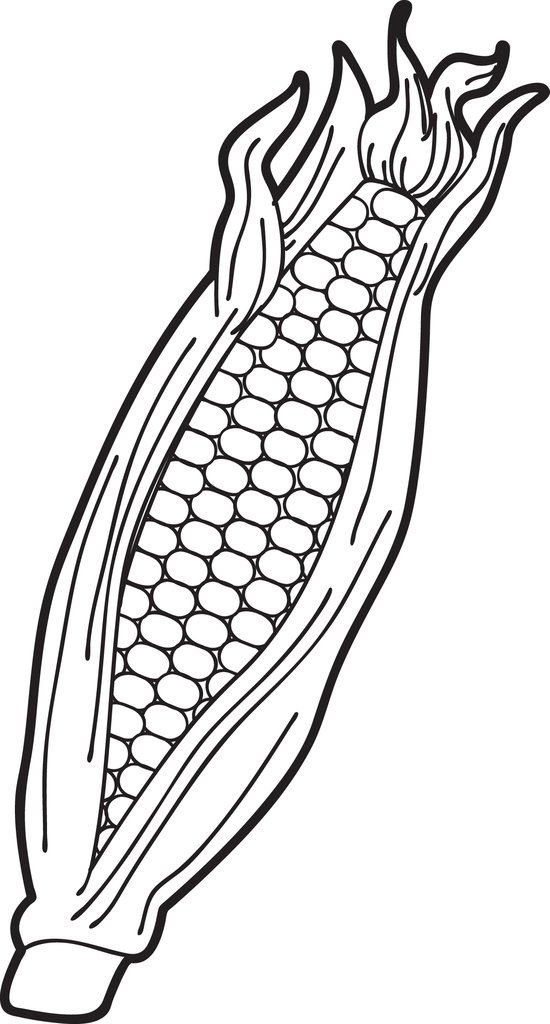 550x1024 Free Printable Ear Of Corn Coloring Page For Kids Supplyme