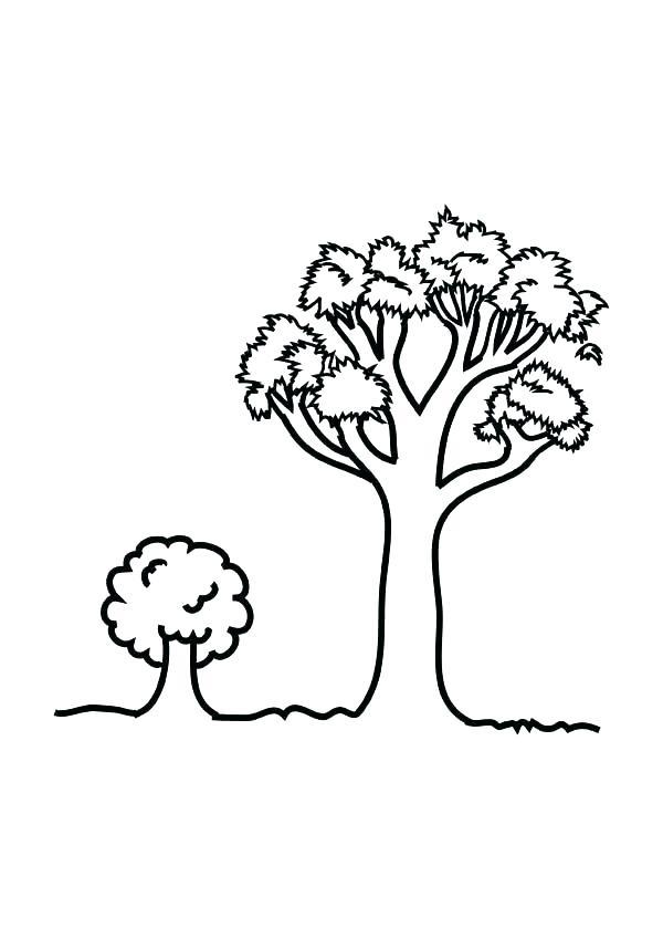 600x849 Oak Leaf Coloring Page Oak Tree Coloring Page Oak Leaf Coloring