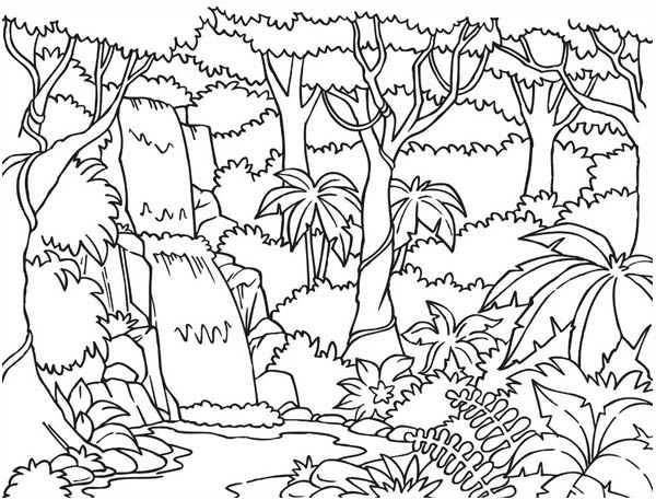 600x457 Forest And Waterfalls Coloring Page Coloring Pages