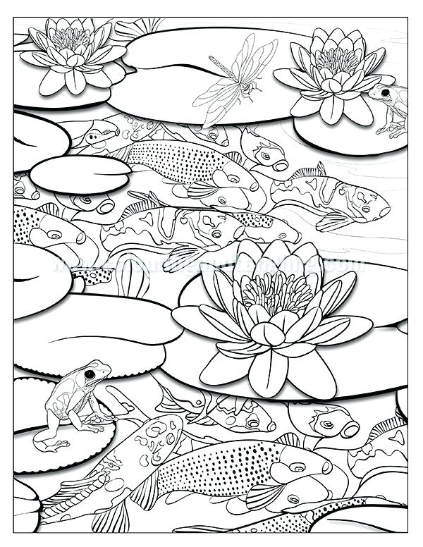 600x776 Ponds Coloring Book Coloring Pages Waterfall And Pond Coloring