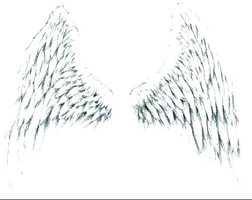 500x397 Awesome Of Angel Wings Coloring Pages Stock Coloring Pages