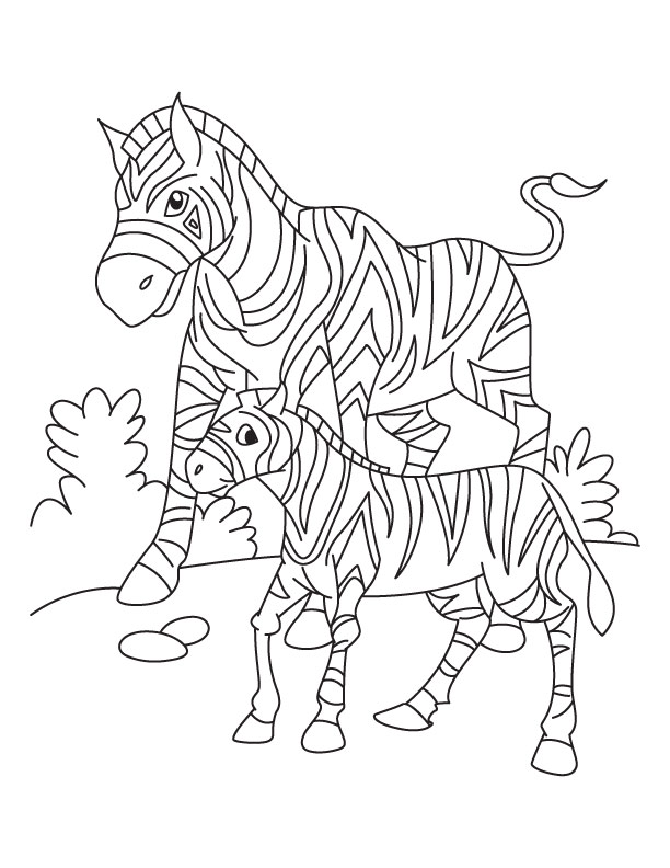 612x792 Baby Zebra Coloring Pages