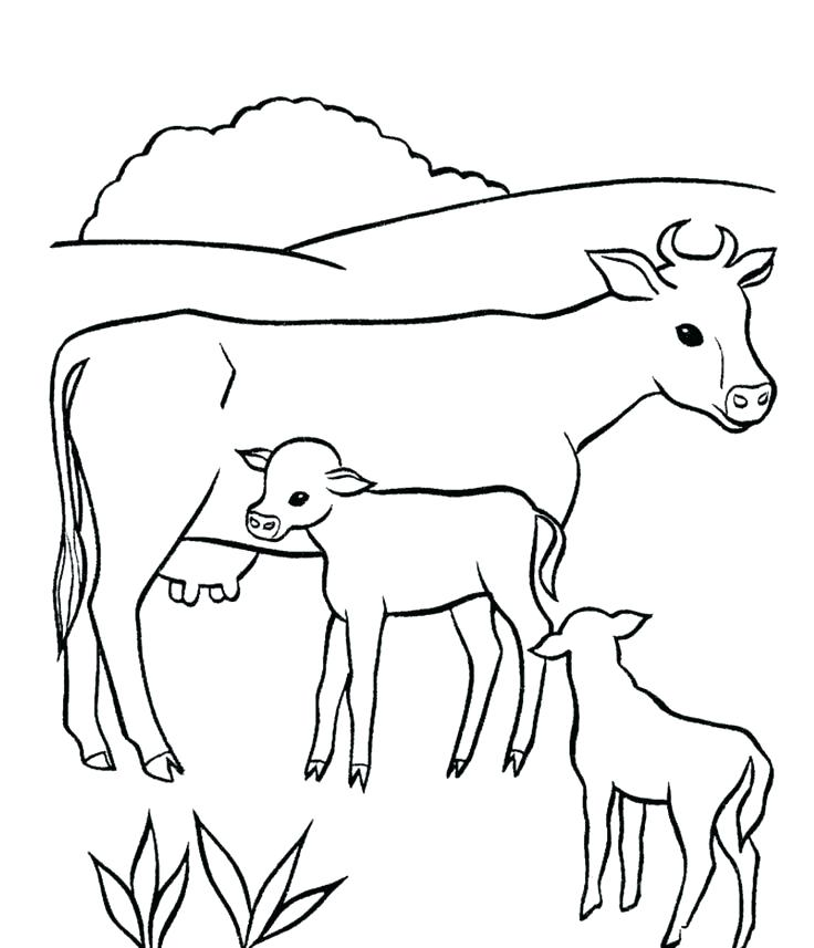 736x857 Coloring Page Cow Lovely Coloring Pages Of Animals And Their