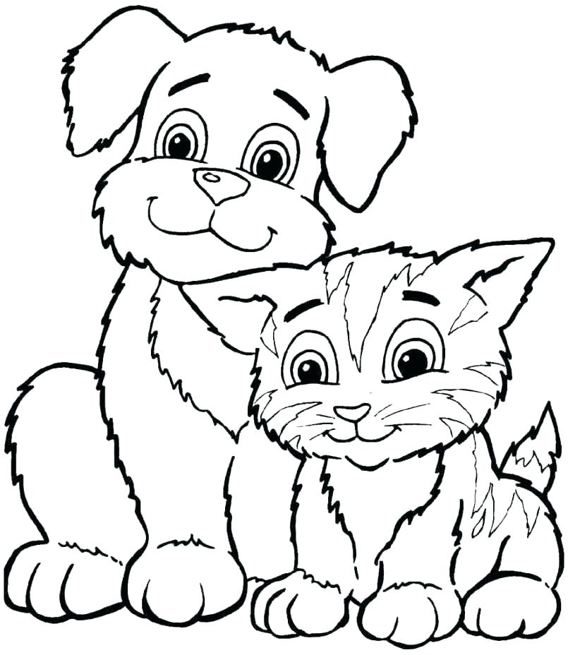 805x928 Coloring Pages Cute Animals Coloring Pages Of Animals And Their