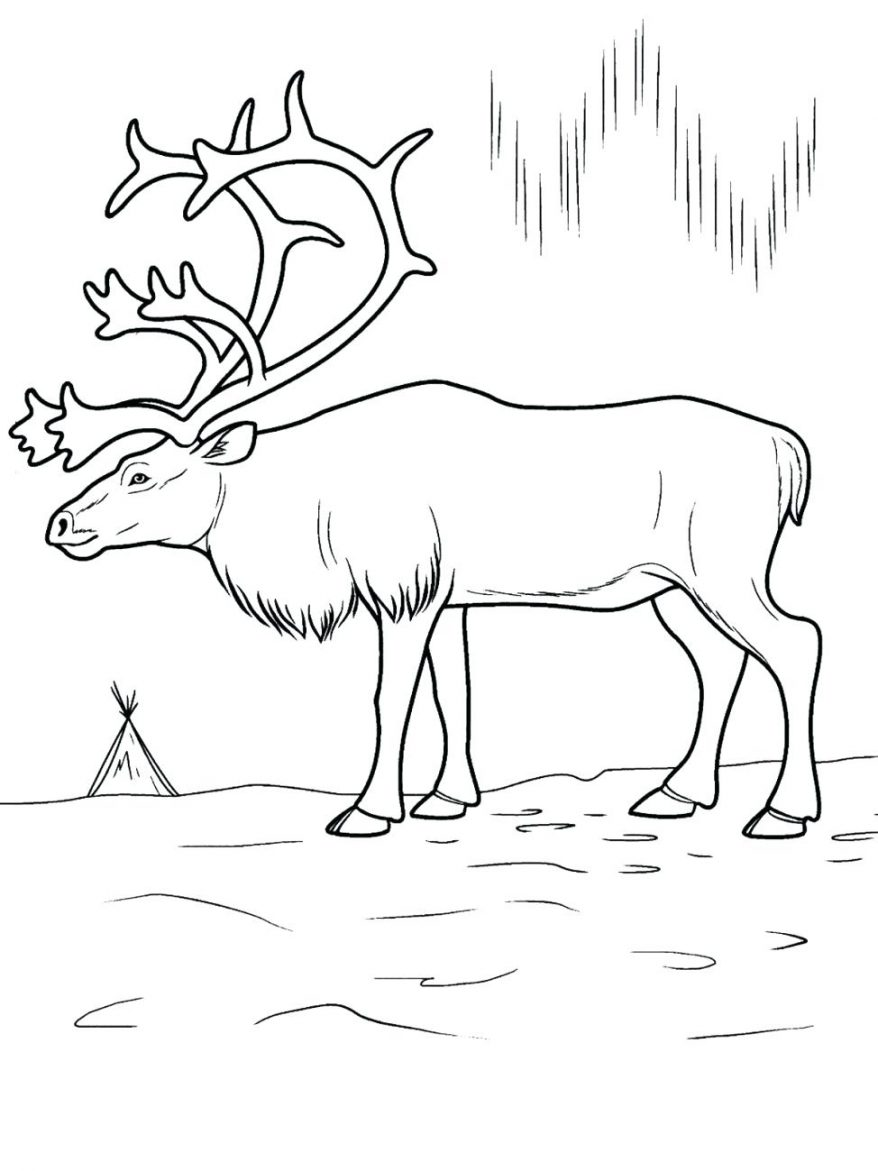 878x1171 Coloring Pages Of Animals And Their Babies