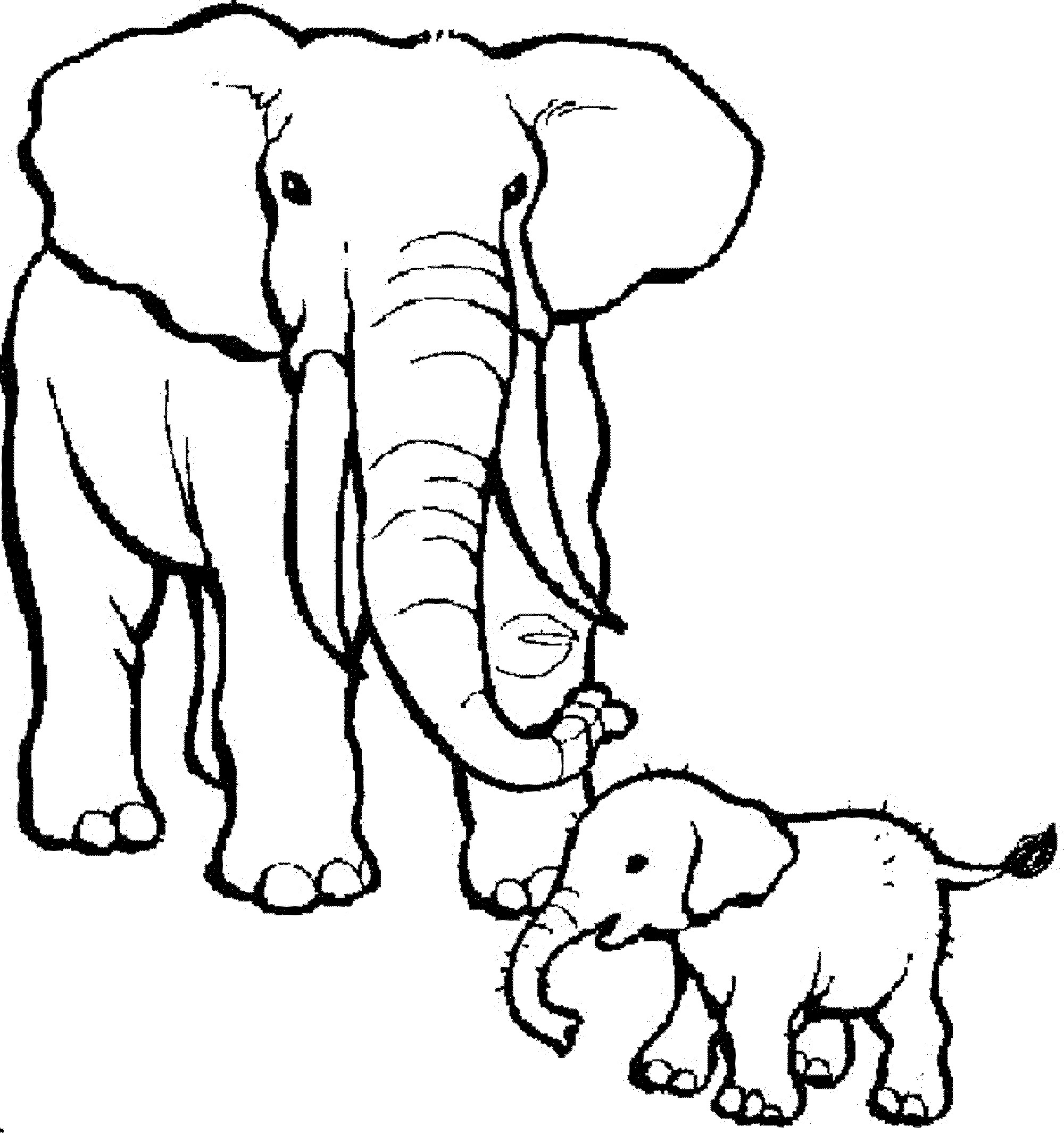 2000x2131 Coloring Pages Of Animals And Their Young